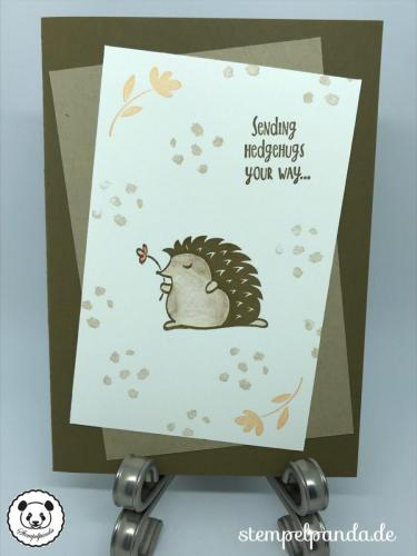 Stempelpanda, Stampin Up, SU, Hedgehugs