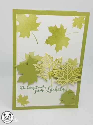 Stempelpanda, Stampin´ Up, SU, Jahr voller Farben, Colorful Seasons, Aus jeder Jahreszeit, Seasonal Layers